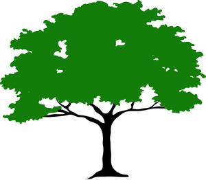 tree clip art clipart panda free clipart images rh clipartpanda com free clipart trees landscaping free clip art tree branches
