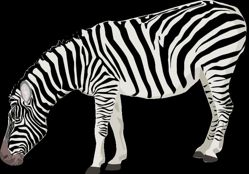 zebra clip art royalty free clipart panda free clipart images rh clipartpanda com clipart zebra face zebra clipart cute