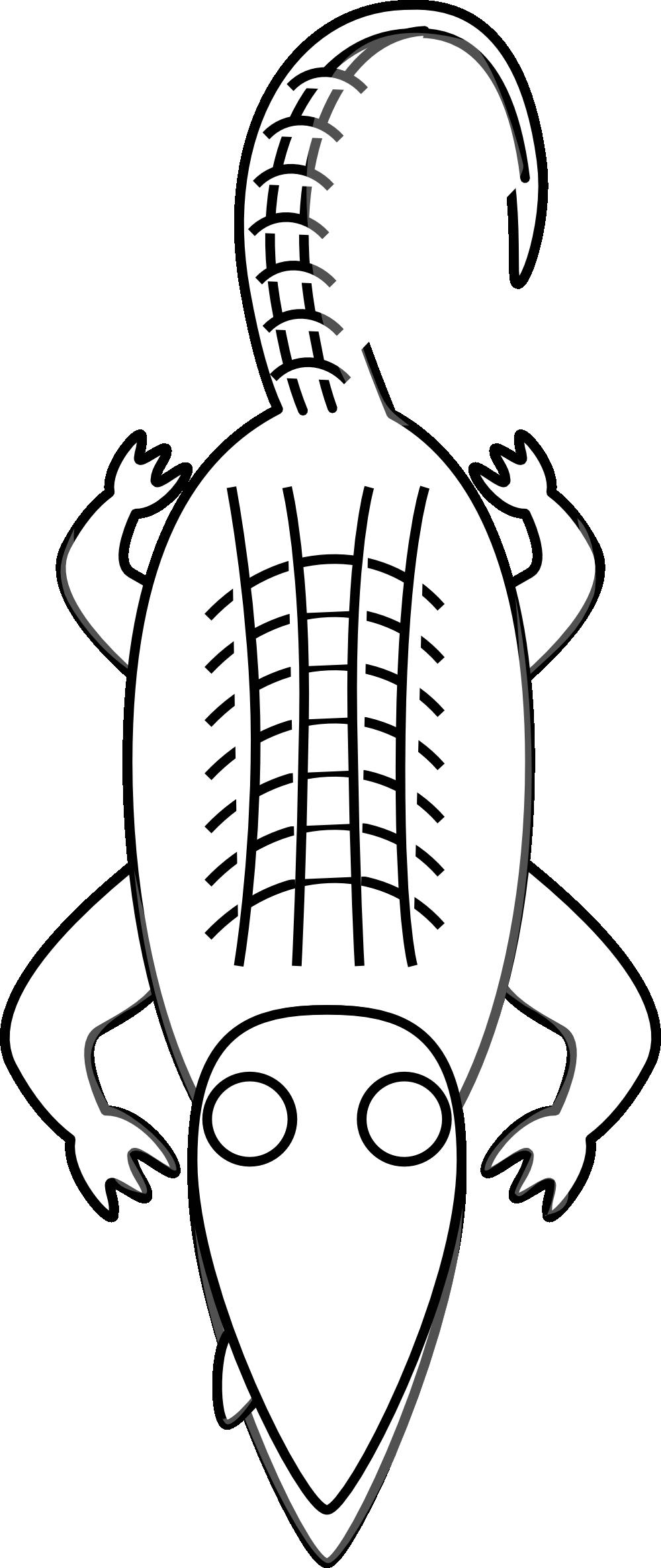 Crocodile Clipart Black And White | Clipart Panda - Free Clipart ... for Clipart Crocodile Black And White  113cpg