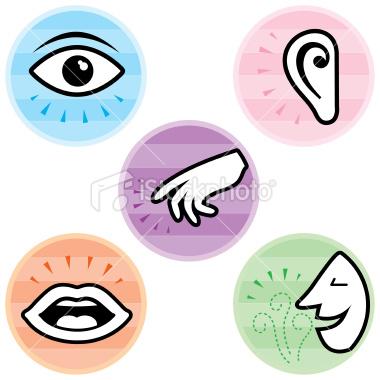 senses-clipart-5-senses-clip-art.png
