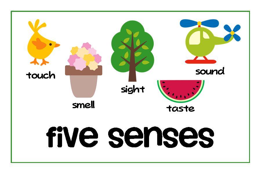 5 Senses Clipart   Clipart Panda - Free Clipart Images