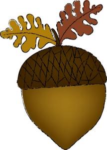 Clip Art Acorn Clip Art clipart acorn acorn