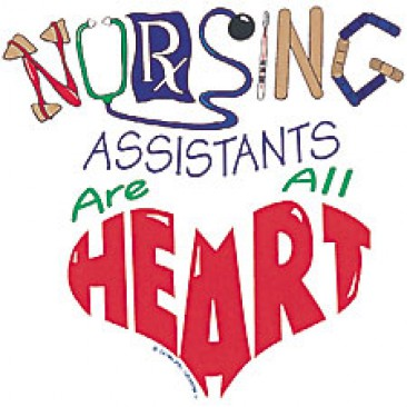 Nursing Assistant best writing on the internet