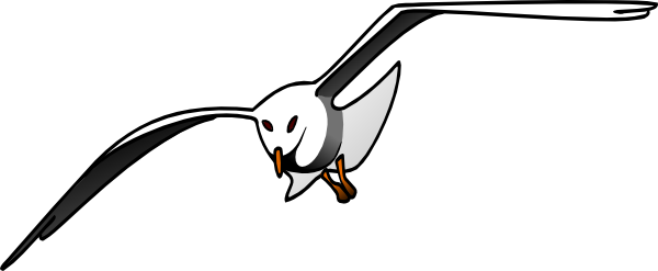 albatross%20clipart
