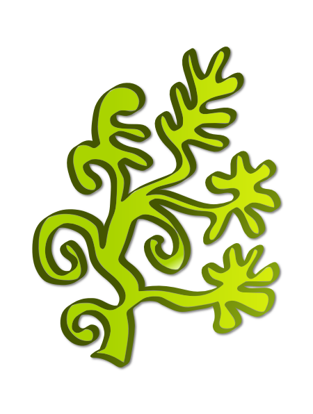 algae 20clipart clipart panda free clipart images seaweed vector free download seaweed vector free download