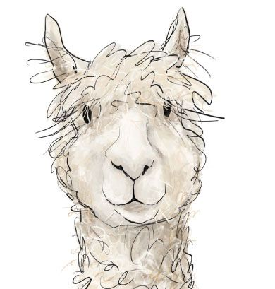 Clip Art Alpaca Clip Art alpaca clipart panda free images