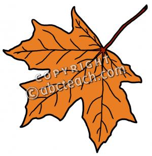 Clip Art: Leaf: Sugar Maple