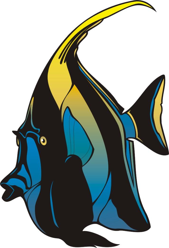 angel fish clipart clipart panda free clipart images rh clipartpanda com Seahorse Clip Art angelfish clipart black and white