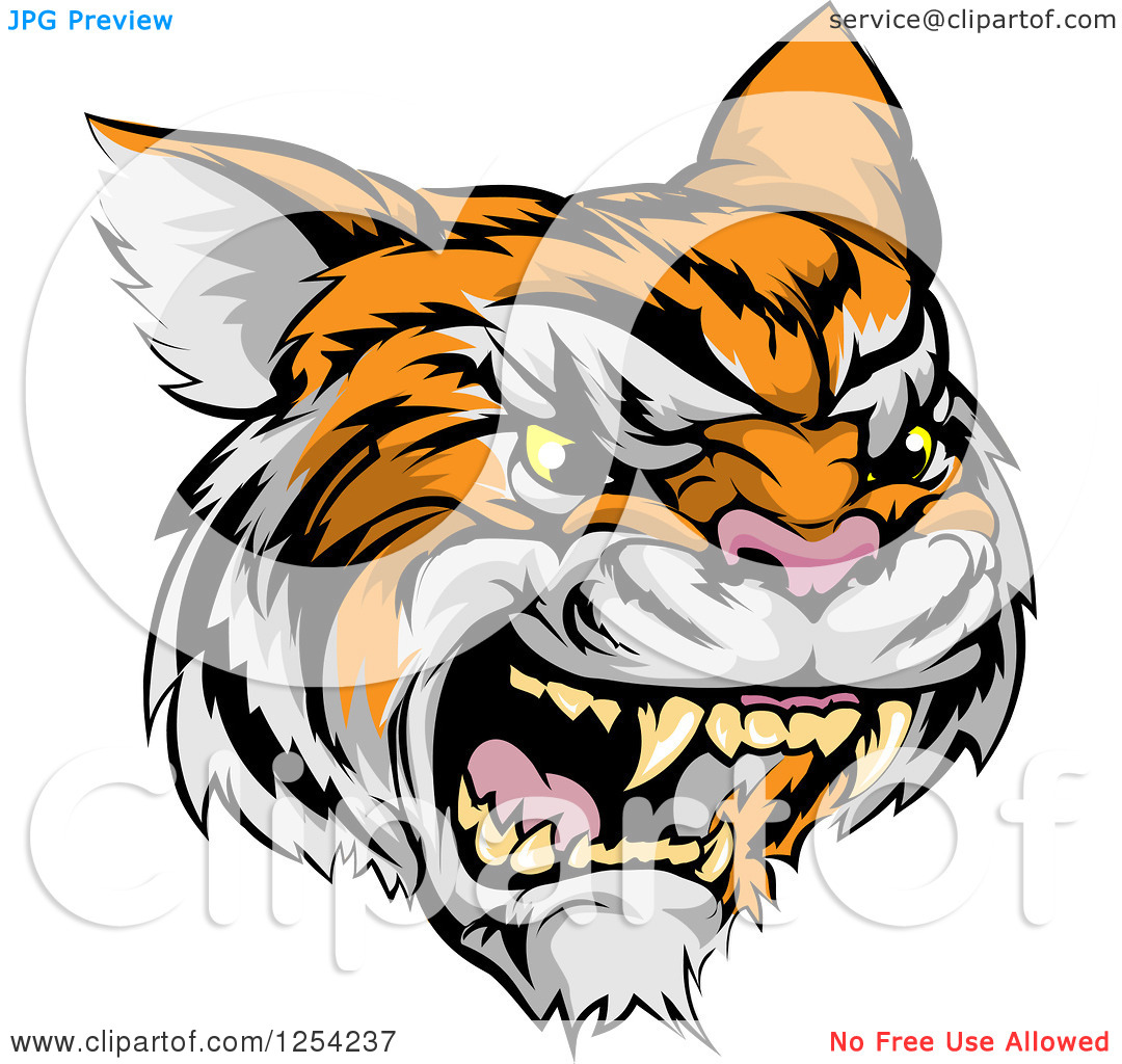 angry%20tiger%20face%20clip%20art