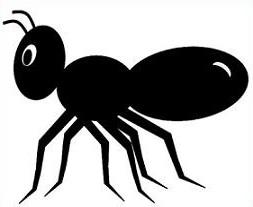 ant clipart clipart panda free clipart images rh clipartpanda com ant clip art coloring pages ant clip art with alphabet