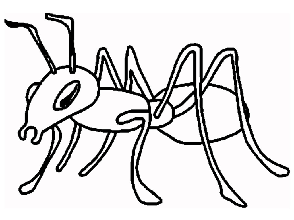 ant-clipart-black-and-...
