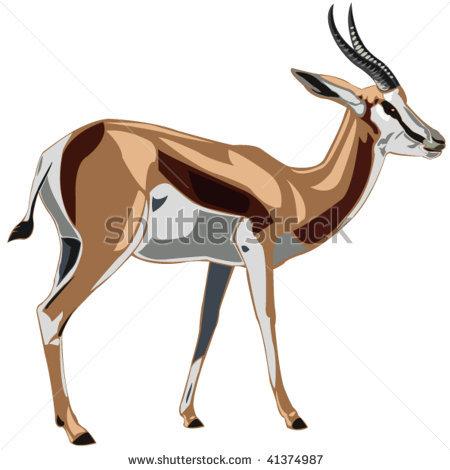 Cartoon Antelope Clipart Springbok Antelope Clipart
