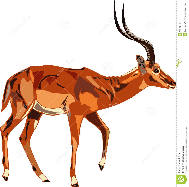 Cartoon Antelope Clipart Impala Antelope Art Clipart