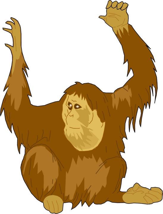 ape-clipart-ape-20clip-20art-ape-1.jpg