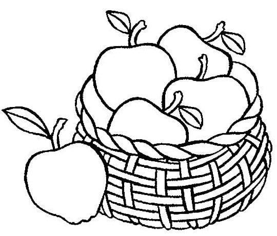 Apple Basket Clipart Clipart