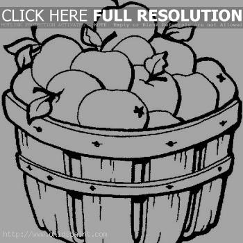 Apple Basket Coloring Page Apples In The
