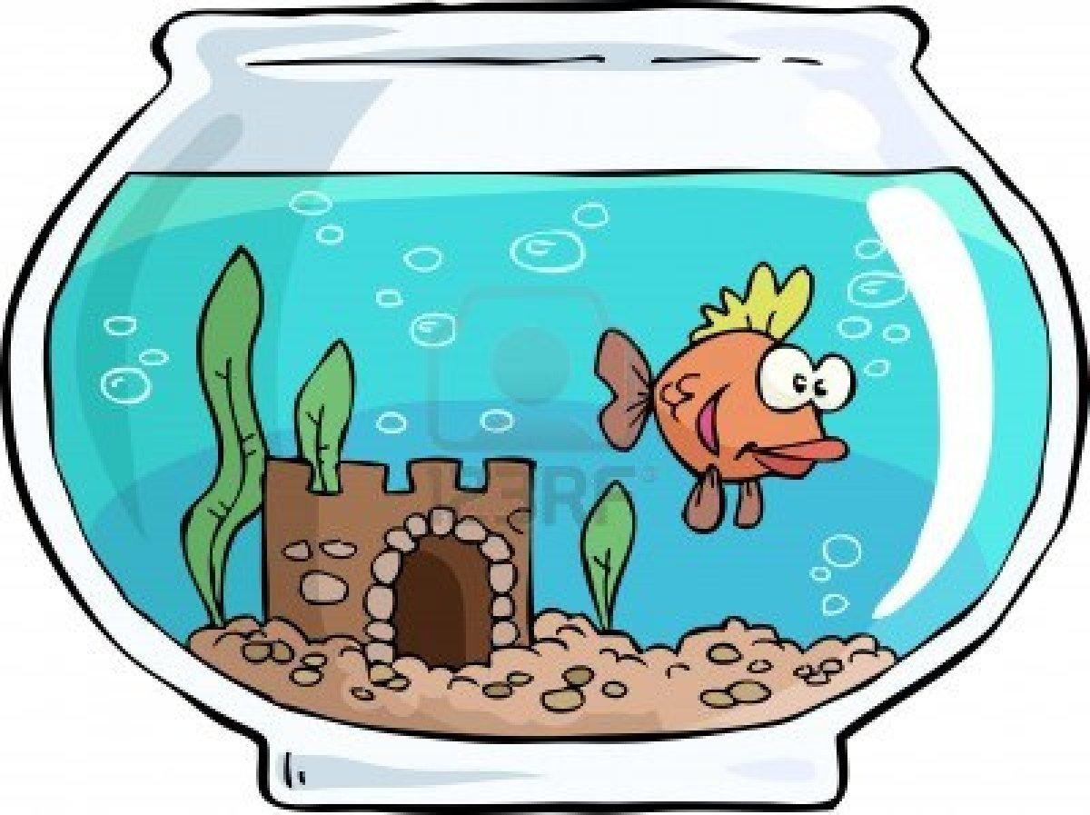 aquarium 20clipart clipart panda free clipart images fish tank clip art plants empty fish tank clipart