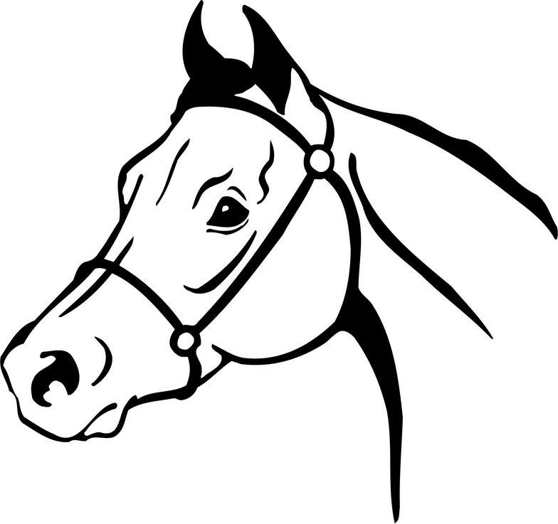 arabian horse head clipart clipart panda free clipart clip art horse head facing front free clipart horse head