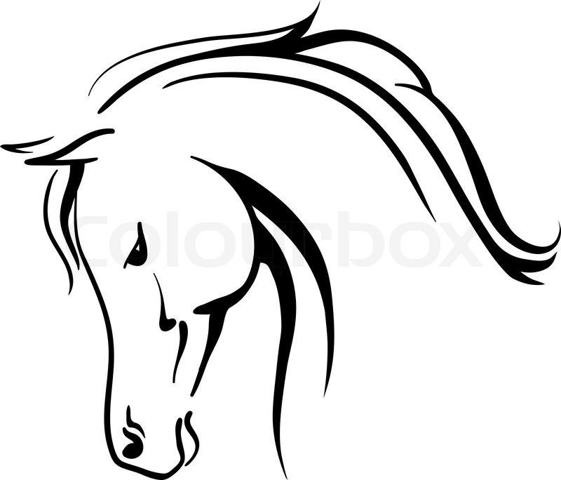 Line Drawing Horse Head : Arabian horse head clipart panda free