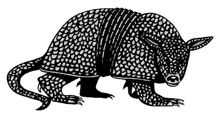 13 best Armadillo Crafts images on Pinterest  Animal