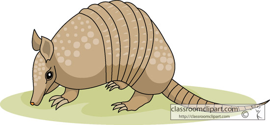 Clip Art Armadillo Clipart armadillo clipart panda free images