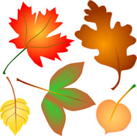 Clip Art Fall Leaves Clip Art Free fall leaves clipart panda free images