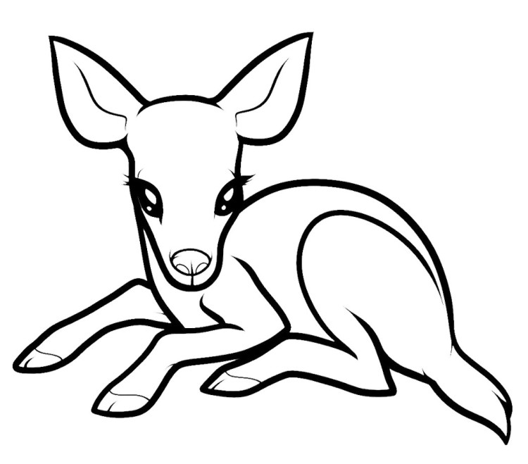 deer skull coloring pages - photo#32