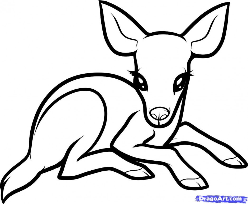 Baby deer coloring pages clipart panda free clipart images for Step by step drawing websites