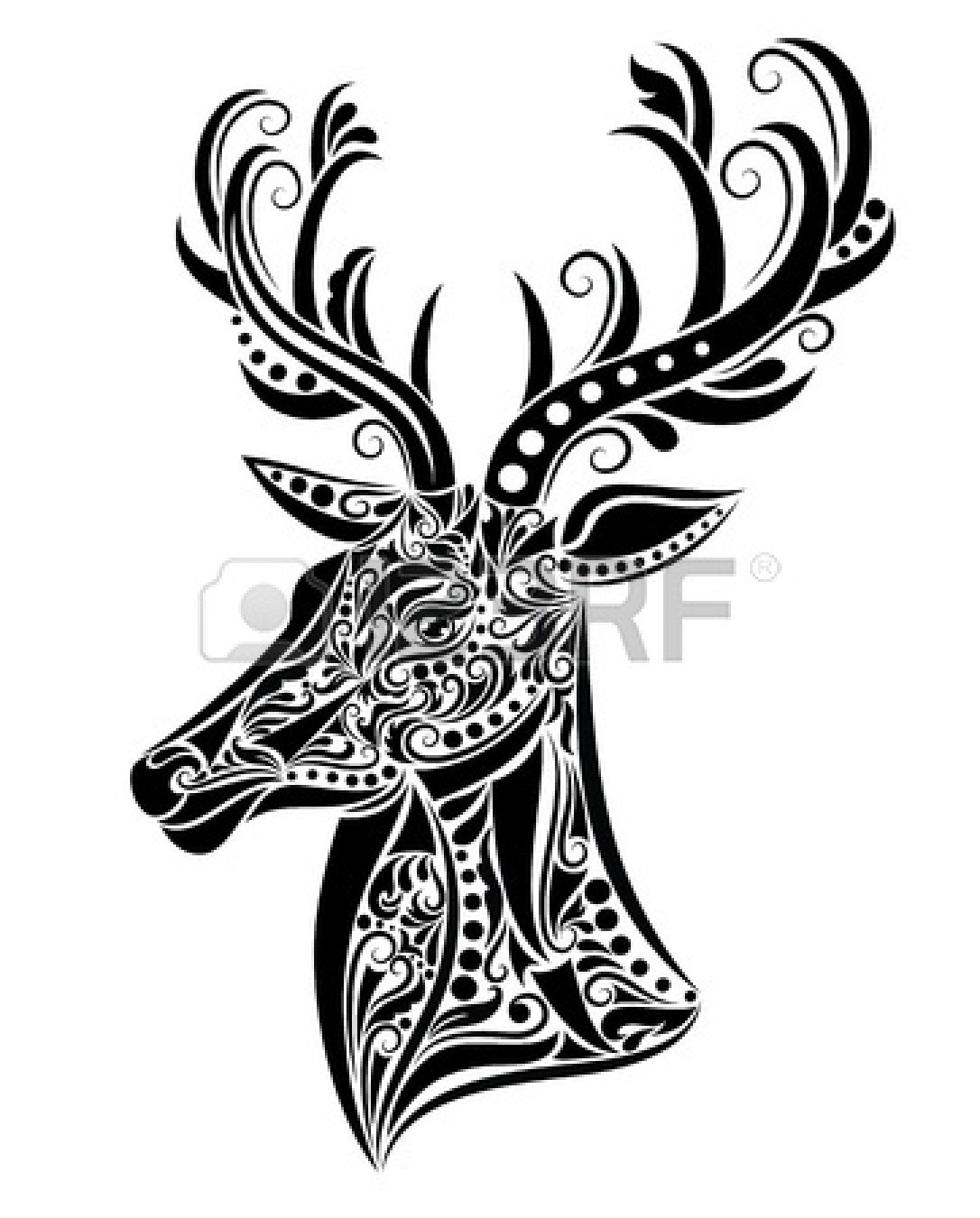 Stag Deer Coloring Pages