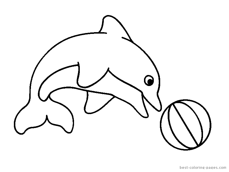 baby dolphin coloring pages - photo#19