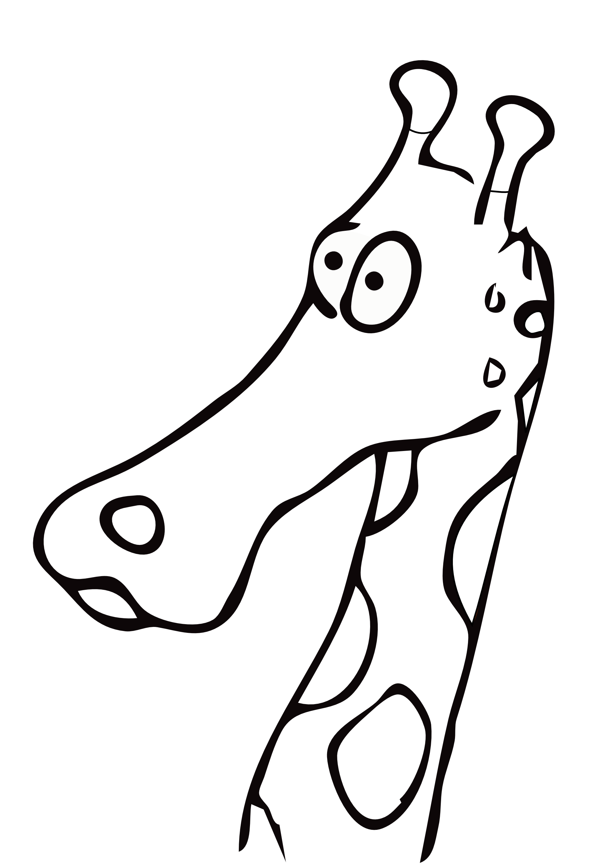 baby%20giraffe%20clipart%20black%20and%20white