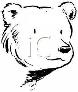 baby%20grizzly%20bear%20clipart