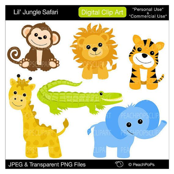 baby%20jungle%20animals%20clipart