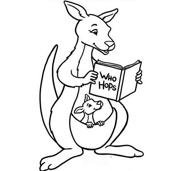 Baby Kangaroo Coloring Pages Coloring Coloring Pages