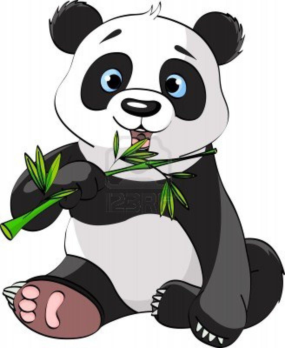 Edinburgh Zoo panda Tian Tian has lost her baby say