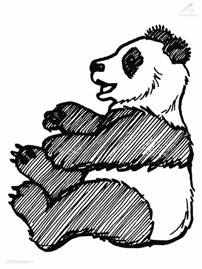 Baby panda coloring pages 1001 coloringpages animals gt