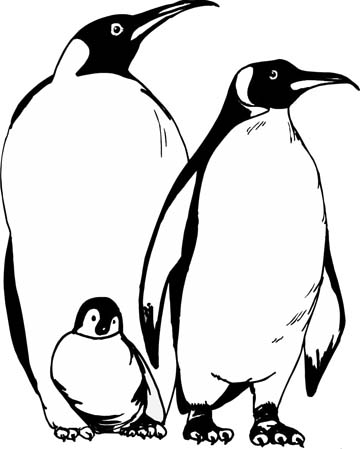 Penguin coloring page