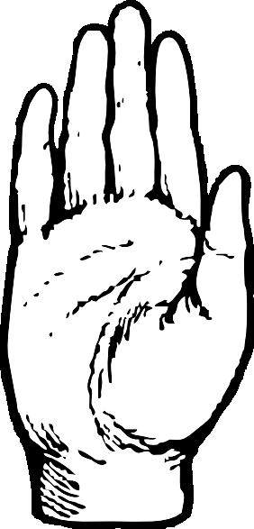 Back Of Hand Clip Art