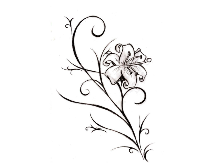 Drawing flowers ideas webwoud this ccuart Choice Image