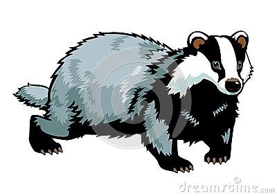 Badger Clipart | Clipart Panda - Free Clipart Images