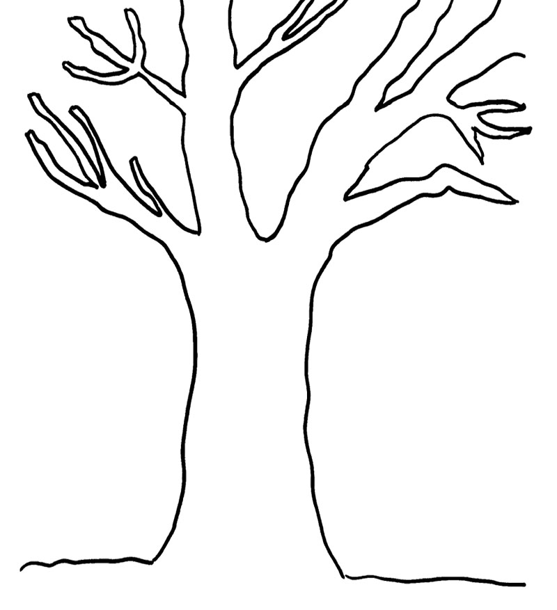 Tree Branches Printable Coloring Pages Big Tree Coloring Page