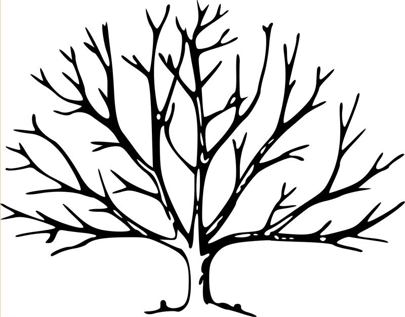 bare tree coloring page clipart panda free clipart images - Bare Tree Coloring Pages Printable