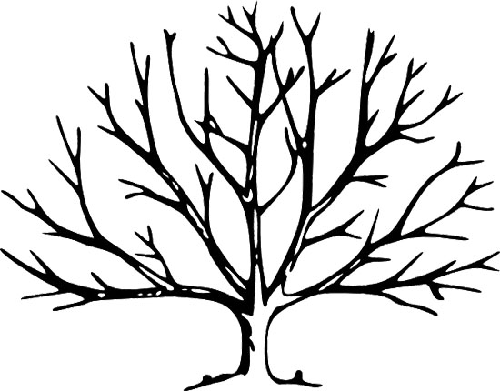bare tree coloring pages - photo #12