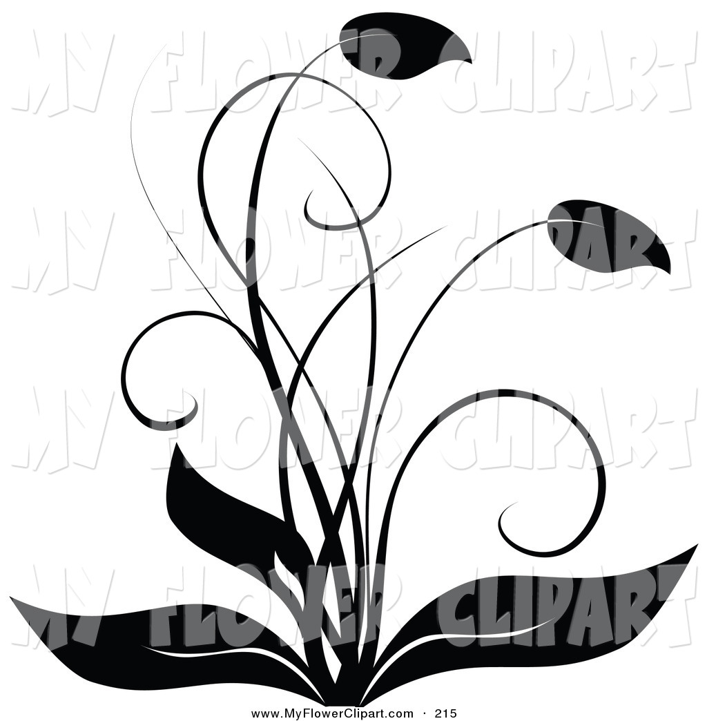 Black and white flower border clipart clipart panda free clipart barker20clipart mightylinksfo