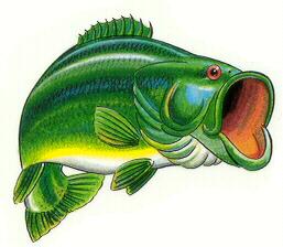 free bass fish clipart bass fish clip art black bass fish clip art printable