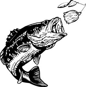 bass fish clip art clipart panda free clipart images bass fish clipart outlines bass fish clipart outlines