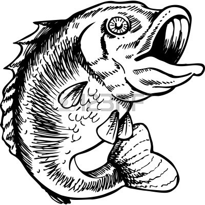 from Wilson large mouth bass clip art