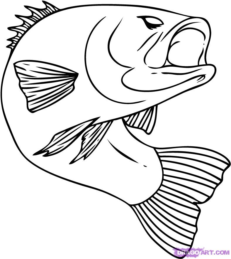 Draw the fish coloring pages for Fish drawing pictures