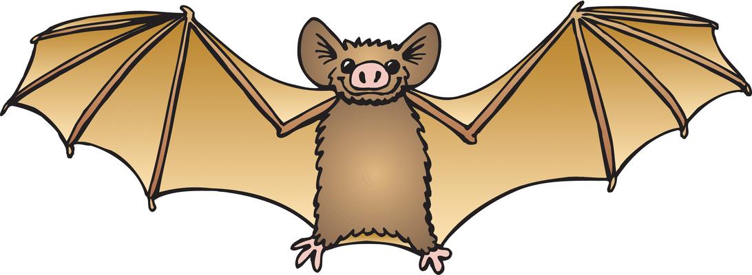 bat clip art 1 jpeg clipart panda free clipart images rh clipartpanda com clipart bats clipart bath bubbles