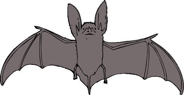 bat clip art is free vector clipart panda free clipart images rh clipartpanda com bat clipart black and white bat clip art free